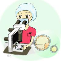 胚の凍結・融解について ~凍結編~